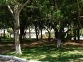 Praça do Ac. das Violetas DSC00793