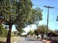 Rua Araci de Azevedo José